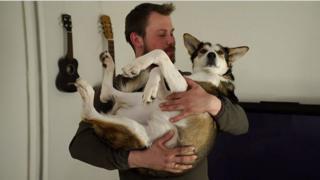 110 очаровательных собак
