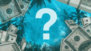 Graphic of money and palm trees