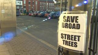 Campaigners' sign on tree