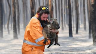 hollywood Adelaide wildlife rescuer Simon Adamczyk holds a koala he rescued at a burning forest near Cape Borda on Kangaroo Island, Australia