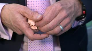 Willie Rennie with pigs in his hand