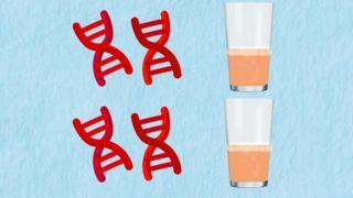 Model DNK i čaša alkohola
