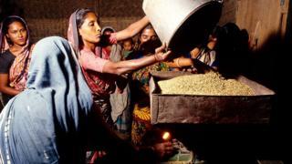 চালের কলে ধান নিয়ে এসেছেন নারী কৃষকরা।