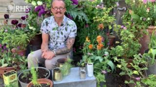 Designer giving tips about garden