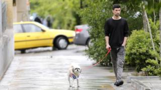 2018年5月,一名男子带狗散步