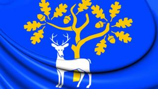 Флаг графства Беркшир