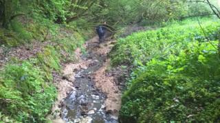 Afon Taf, Carmarthenshire