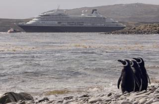 Penguins observe a cruise ship
