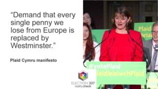 Leanne Wood launching the Plaid manifesto