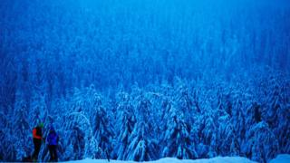 People stand in front of a snow-covered forest in Oberwiesenthal, Germany