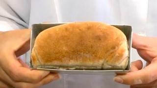 Pão feito com farinha de barata