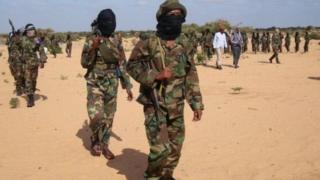 Wapoiganaji wa Somalia al-Shabab