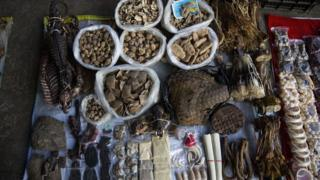 Elephant skin, a tiger claw, ivory, porcupine quills, and more are displayed at a small market stall on February 17, 2016 in Mong La, Myanmar