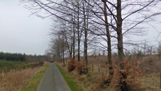 Birkshaw Forest