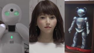روبوٹس