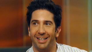 Actor and director David Schwimmer