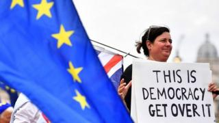 Brexit supporter outside Parliament