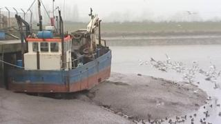 Boat at King's Lynn