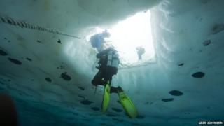 A diver rises to the surface underneath the ice