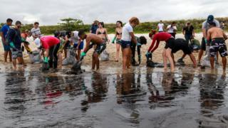 environment Volunteers clearing up oil off a Brazilian beach