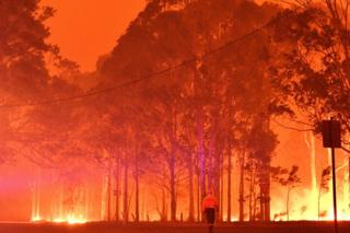 A firefighter walks past burning trees