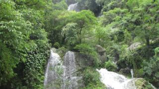 शिवपुरी-नागार्जुन राष्ट्रिय निकुञ्जको एक झरना