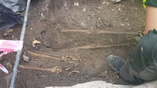 Skeletons being uncovered during the dig