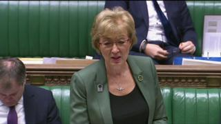Andrea Leadsom speaking in the House of Commons