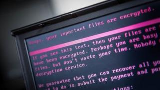 الأرنب السيء برنامج خبث جديد يضرب الأجهزة ويؤدي إلى تشفير الملفات
