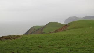 Dorset coast at Doghouse Hill