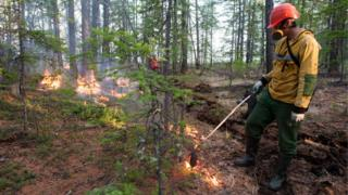 A forest fire in central Yakutia, Sakha Republic in June 2020