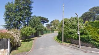 Parc Gorllewin Gannock