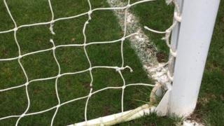 Football net damaged by rabbits