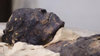 The mummy's head at Maidstone Museum