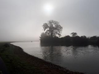 A misty morning at Port Meadow