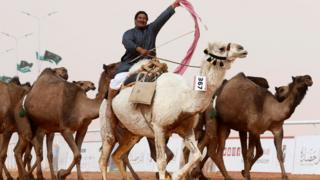 A man cheers as he rides a camel during King Abdulaziz Camel Festival in Rimah Governorate, north-east of Riyadh, Saudi Arabia January 19, 2018