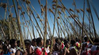 Maidens carry and lay reeds while they sing and dance during the annual royal Reed Dance at the Ludzidzini Royal palace on 28 August 2016 in Lobamba, Swaziland.