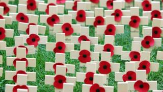 Poppy crosses are pictured in the Field of Remembrance at Westminster Abbey on November 11, 2004 in London, England.