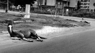 "A photo by Sunmi Smart-Cole entitled: ""Two Tired Souls"" - 1983, showing a hors and a man lying down on a street in Nigeria"