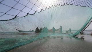 عکس آرشیوی از ماهیگیری در خلیج فارس - امارات