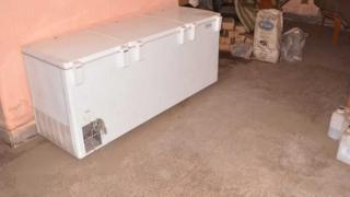 freezer used to preserve the mother's body