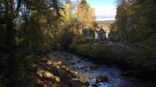 View of stream and trees in Aberfeldy