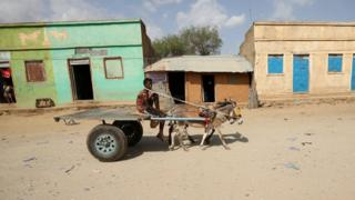 A man rides a donkey cart in Badme, a territorial dispute town between Eritrea and Ethiopia currently occupied by Ethiopia, June 8, 2018