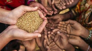 هشدار سازمان ملل درباره افزایش گرسنگان در جهان