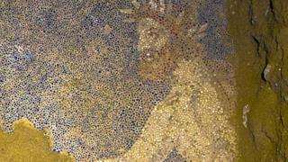 Mosaic detail from tomb site in Amphipolis, Greece