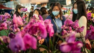 香港的花市