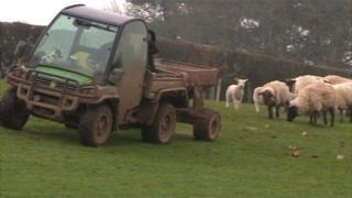 Farming in Powys