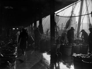 Fish being unloaded on the quayside at Hull (1932)