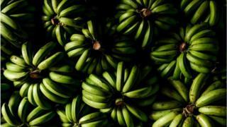 Связки бананов