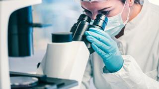 Investigadora analizando una muestra a través del microscopio